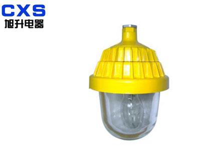 C—BPC8720,防爆平台灯,防爆泛光灯